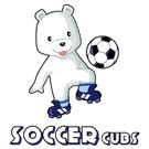 Soccer Cubs